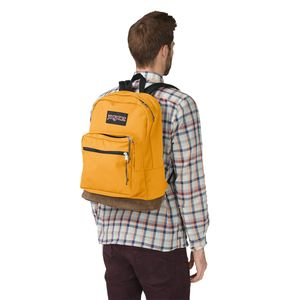 TYP7-Jansport-Right-Pack-EnglishMustard-04V-Variacao4